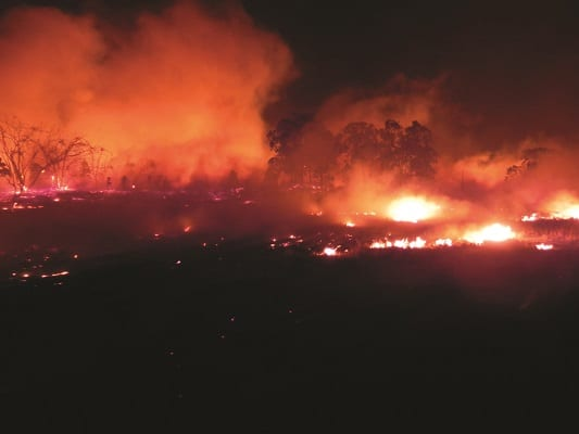Image from the 2002 Fires in Glenorie