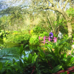 Galston District Garden Club