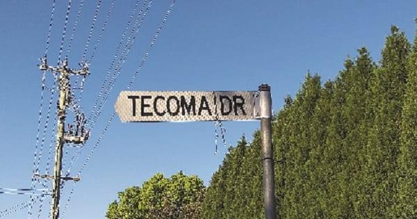 Tecoma Drive