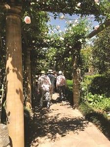 Galson District Garden Club